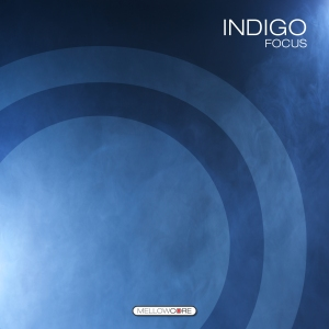 indigo_3000